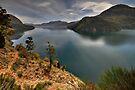 Nahuel Huapi Lake, Argentina by Peter Hammer
