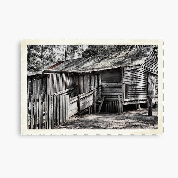 The Shearing Shed - Australiana Pioneer Village Wilberforce NSW Australia Canvas Print