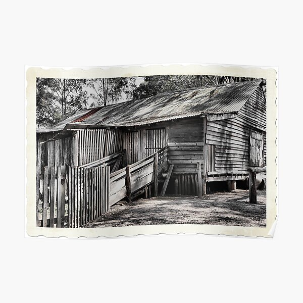The Shearing Shed - Australiana Pioneer Village Wilberforce NSW Australia Poster