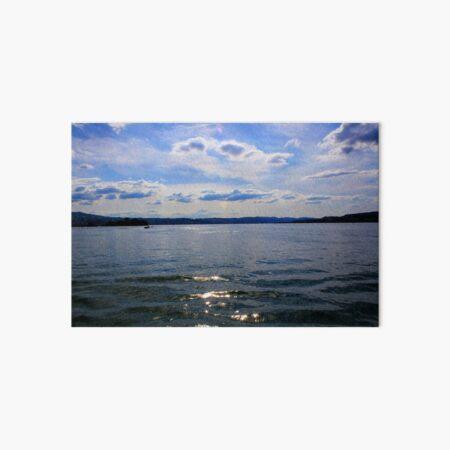 Lake Zurich Art Board Print