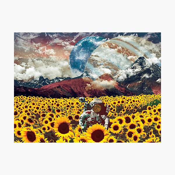 Astronaut lost in a galaxy of sunflowers Photographic Print