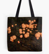 Little velvet-orange globes Tote Bag