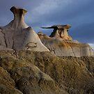 Bisti Badlands by Cecil Whitt