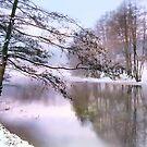 Pastel Winter by Jessica Jenney