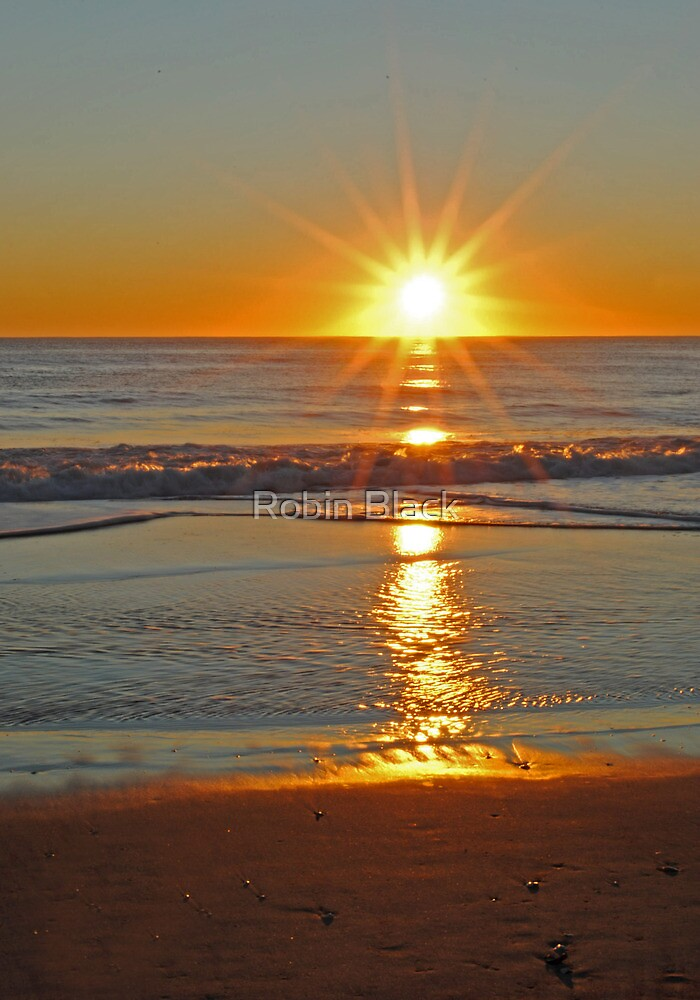 (Another) Salvo Sunrise by Robin Black
