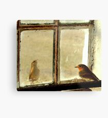On the inside looking out Metal Print