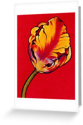 Parrot Tulip by YouBeaut Designs