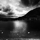 Rydal Views - B&W by John Hare