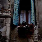 fenêtre ouverte by Bruno Lopez