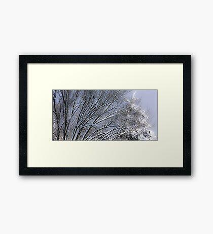 Peaceful Winter's Night Framed Print