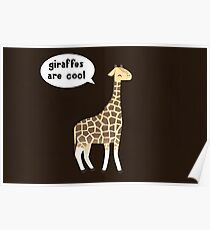 Giraffes are cool Poster