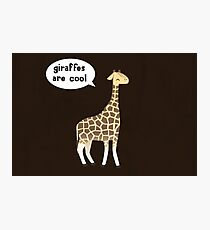 Giraffes are cool Photographic Print