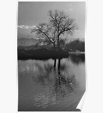 Twilight on Olt River Transylvania Poster