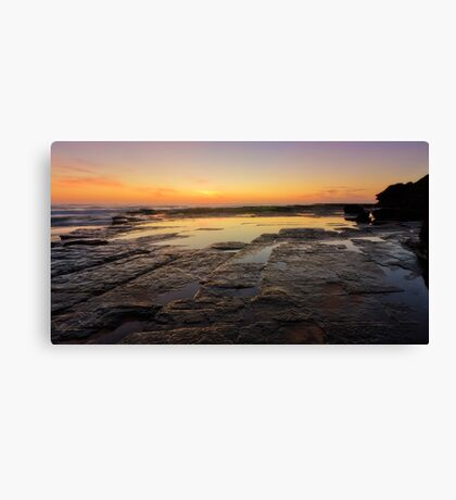 Lines of Nature Canvas Print