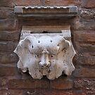 Mask by Barbara Wyeth