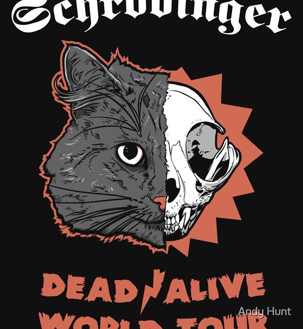 Schrödinger - DEAD/ALIVE World Tour by Andy Hunt