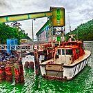 Parked at Mourilyan Harbour by Jennifer Craker
