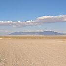Endless Desert by Henry Plumley