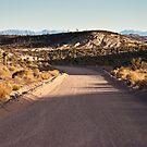 Groom Lake Road Towards ET Highway by Henry Plumley