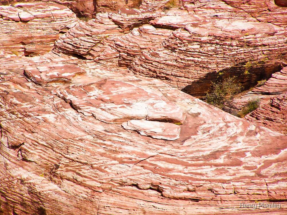 Fingerprint rock by Henry Plumley