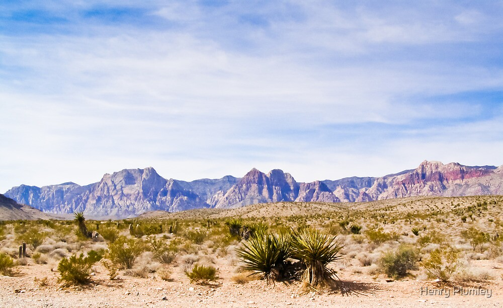 Wide Landscape of Red Rock Canyon by Henry Plumley