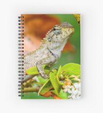 Cuaderno de espiral Leguan Echse 7797