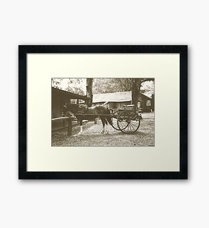 Australian Pioneer Village - Horse & Buggy Framed Print