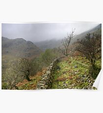 Dovedale Poster