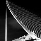 The bridge Assut de l'O 2 by Slawomir  Piasecki