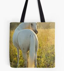 Paso Fino horse in the morning Tote Bag
