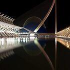 The bridge Assut de l'Or 3 by Slawomir  Piasecki