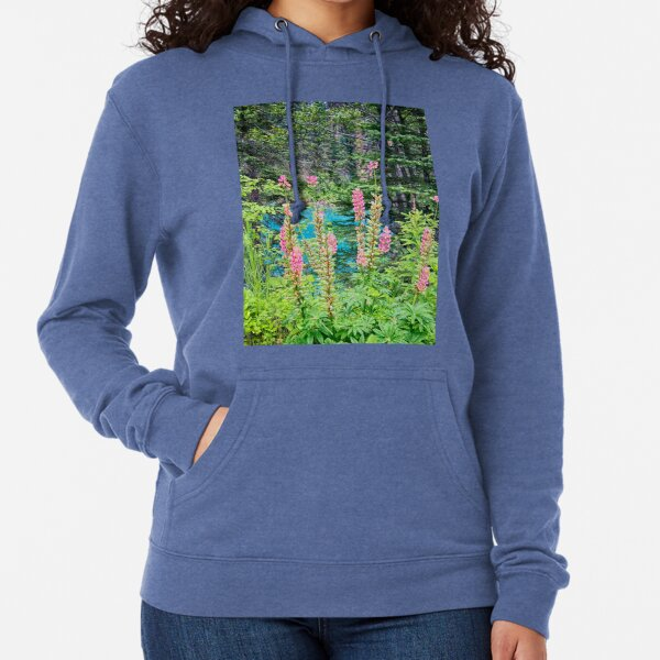 Your Beauty Surrounds Me Lightweight Hoodie