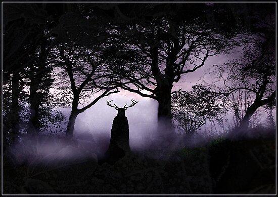 Shadow of Herne von Angie Latham