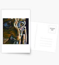 Seth Postcards