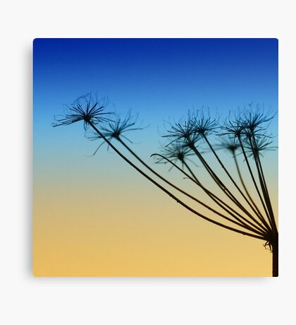 Supporting the sky Canvas Print