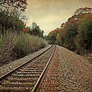 Autumn Around the Bend by Lisa Holmgreen Porier
