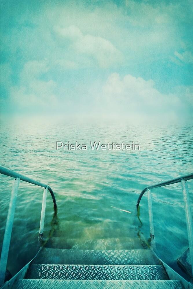into the sea by Priska Wettstein