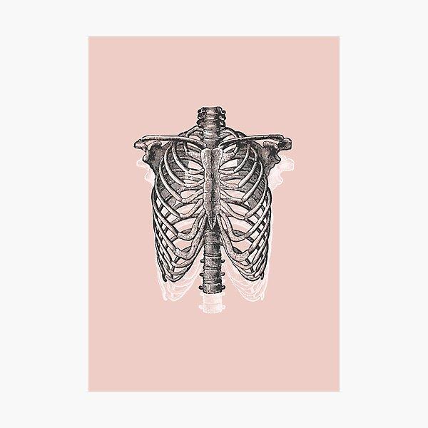 Anatomical Ribcage • Pastel Pink • Pastel Goth Photographic Print