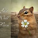 Chippy - Get Well Soon Card by Lori Deiter