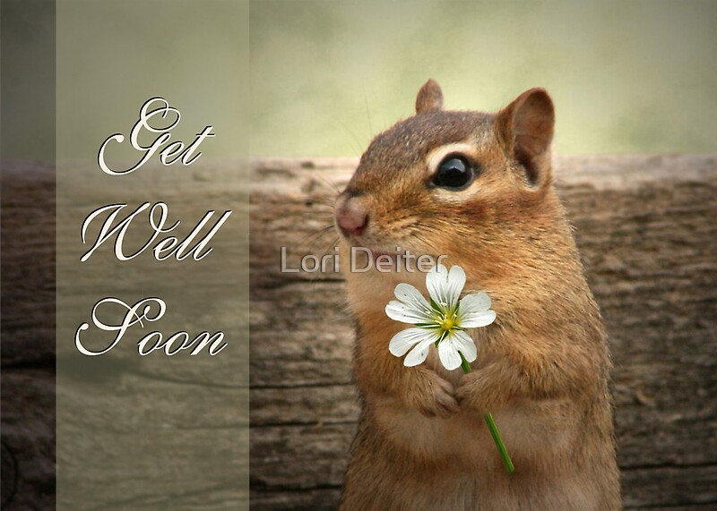 Quot Chippy Get Well Soon Card Quot By Lori Deiter Redbubble