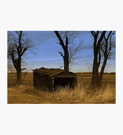 Shredded Shed Photographic Print