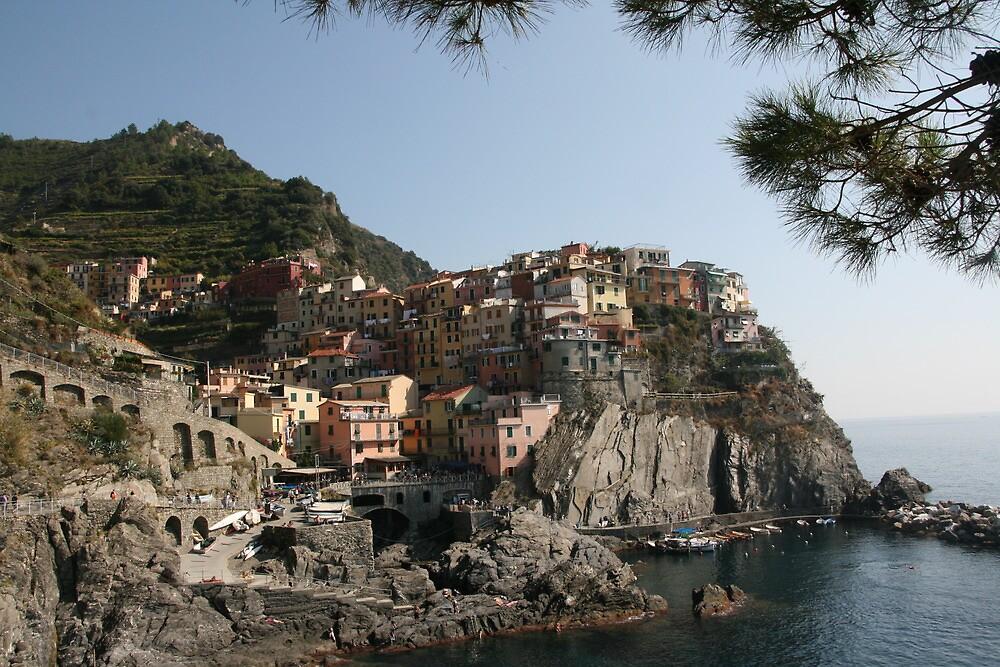 Riomaggiore - Cinque Terre by Rob Chiarolli