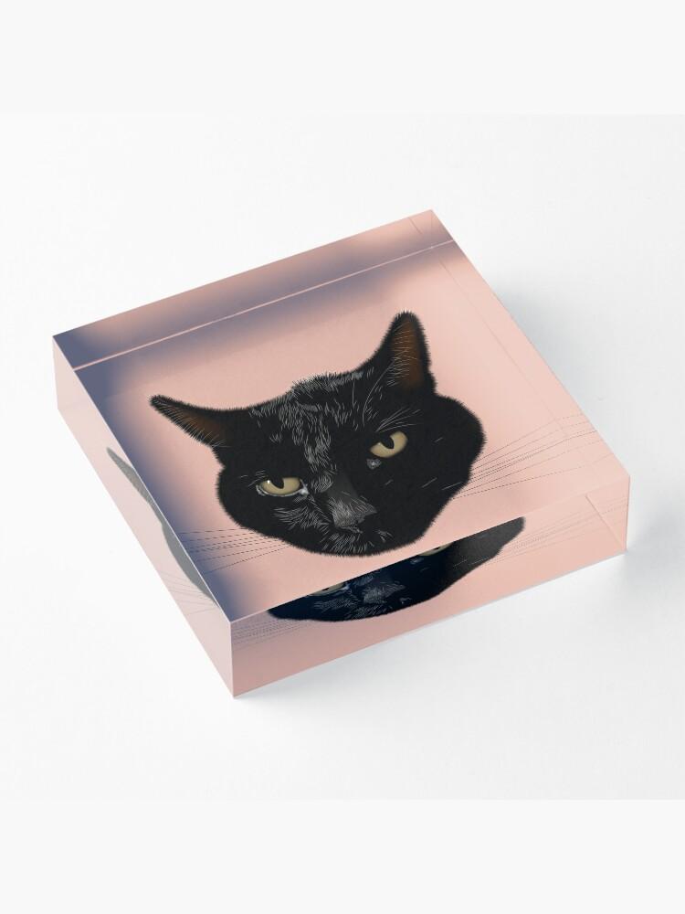 Alternate view of NDVH Kimmy the Cat Acrylic Block