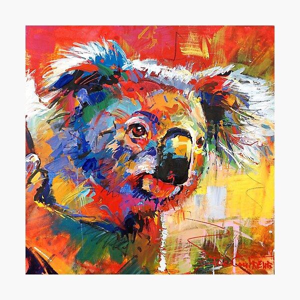 Curious Koala Photographic Print