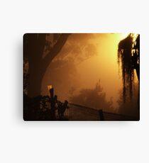 Mist & Gauge.... Canvas Print