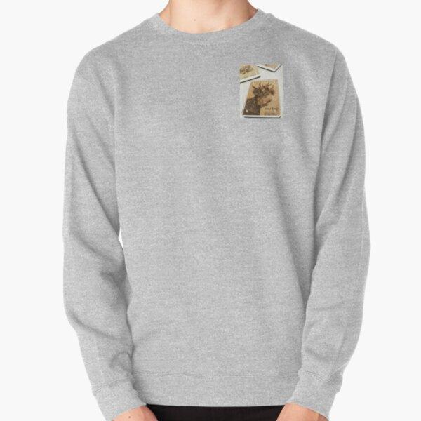 Sun Men Special Pullover Sweatshirt