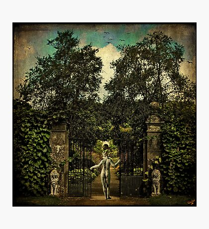 Hope Arrives At The Garden Gate Photographic Print