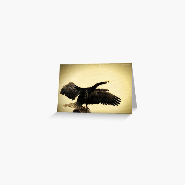 Darter Greeting Card