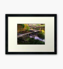 River Path Framed Print