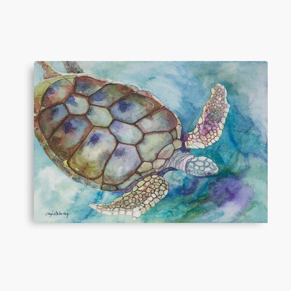 Xcaret Turtle Canvas Print